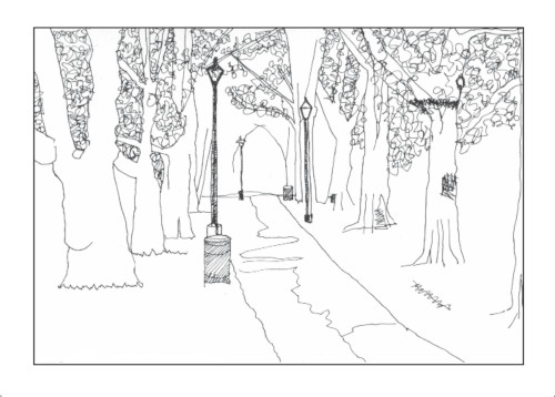 Pen and ink drawing of an avenue of trees in Highbury Fields, part of the Drawing my way round London series
